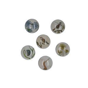 Aimants, verre, oiseaux et fleurs, set de 6 pièces