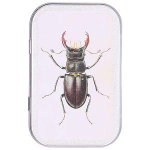 Blechdose, Käfer