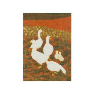 Carte, World Animal Protection, oies