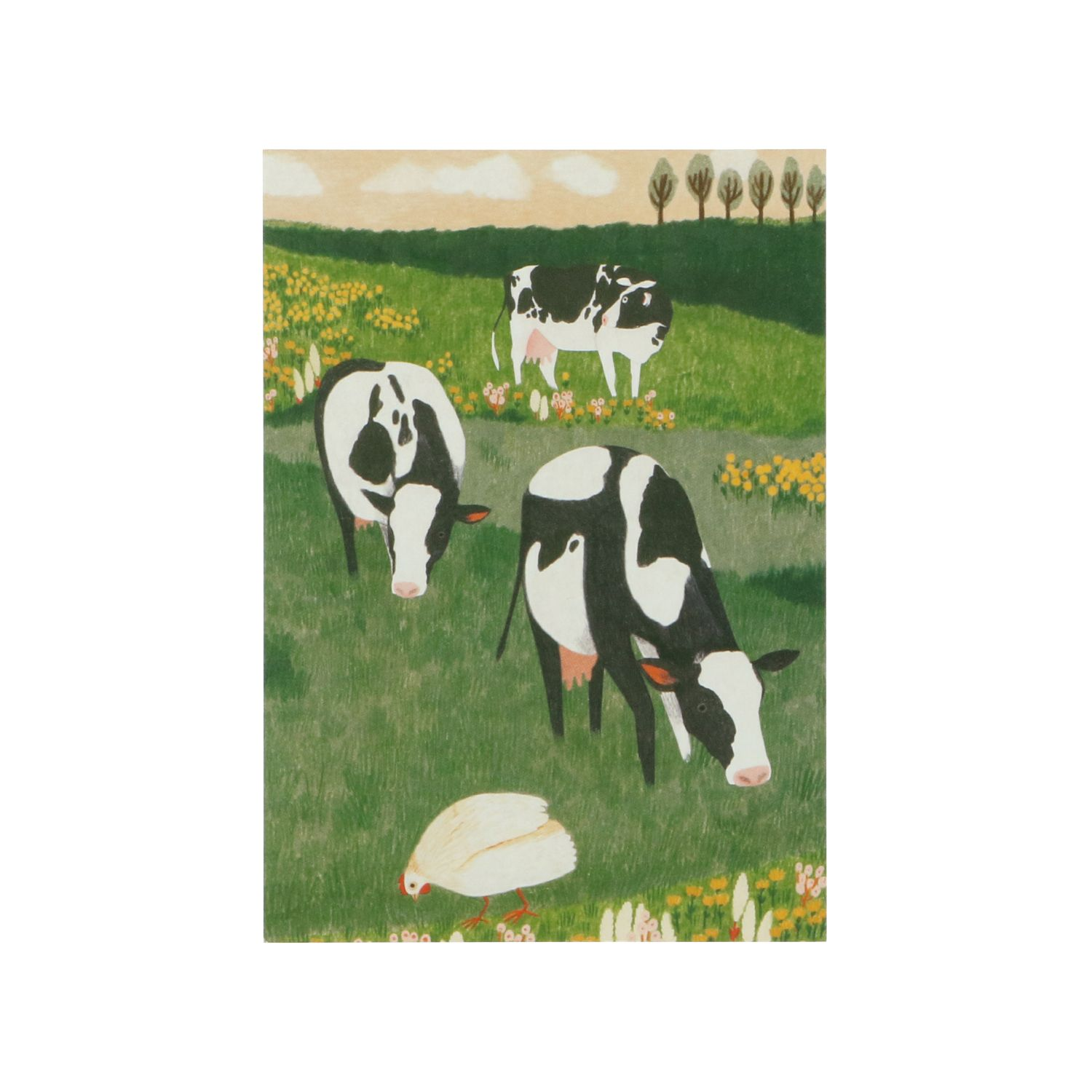 Carte, World Animal Protection, vaches