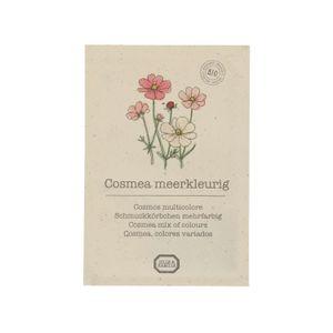 Graines de fleurs, biologique, Cosmos