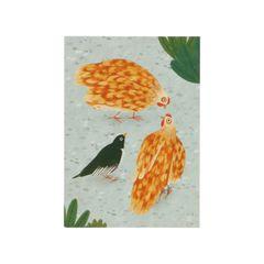 Kaart, World Animal Protection, kippen