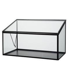 Kweekkas, glas en metaal, groot