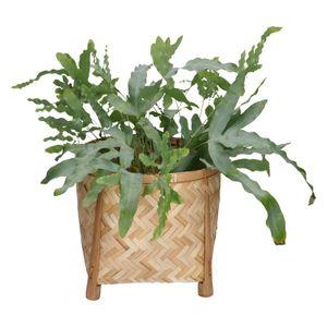 Pot op pootjes, bamboe, naturel